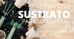 7 recetas de sustrato casero para suculentas y cactus