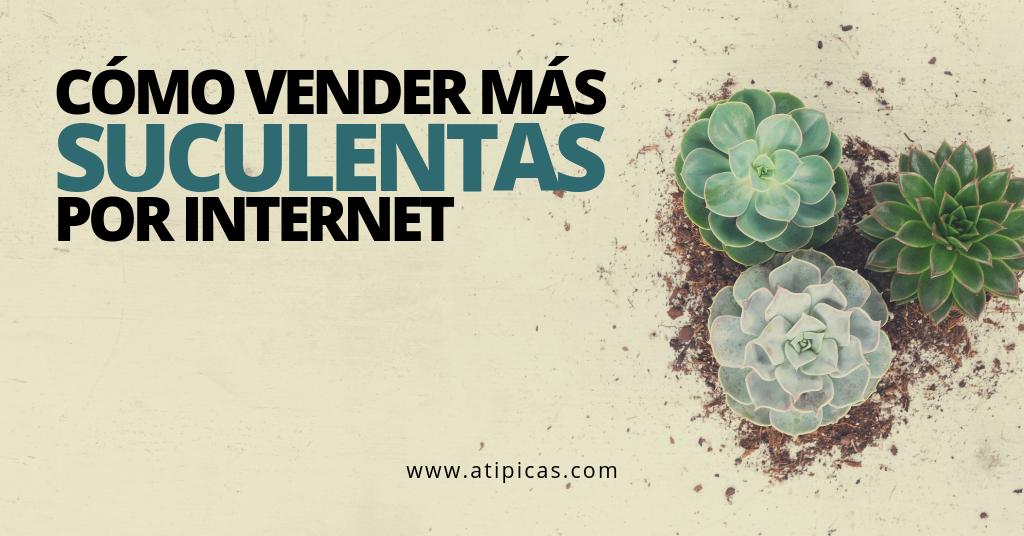 Vender suculentas por Internet