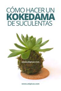 Cómo hacer un kokedama de suculentas