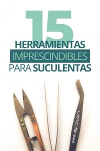 15 herramientas imprescindibles para suculentas