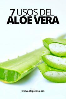 7 usos del Aloe vera