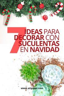 7 ideas para decorar en Navidad con suculentas