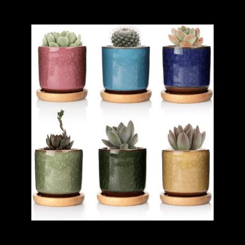 Macetas de cerámica para suculentas