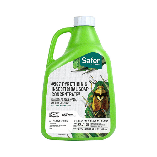 Safer Brand Insecticidal Soap Concentrate