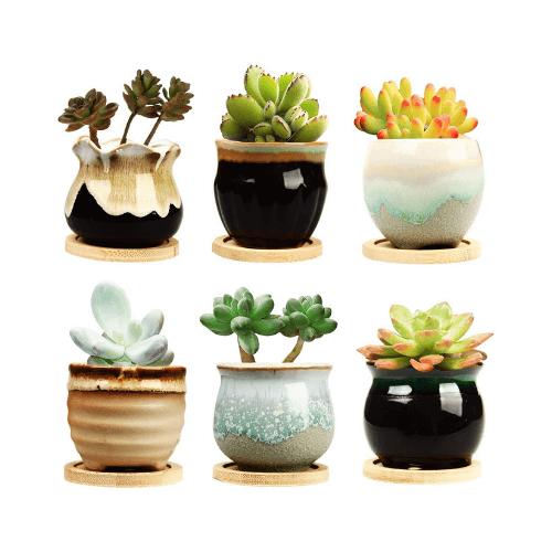 Brajttt - Maceta de cerámica para suculentas de 2.5 in con drenaje, maceta para plantas, macetas pequeñas para plantas pequeñas