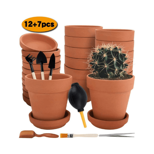 Pack Terra Cotta Pots with Saucer